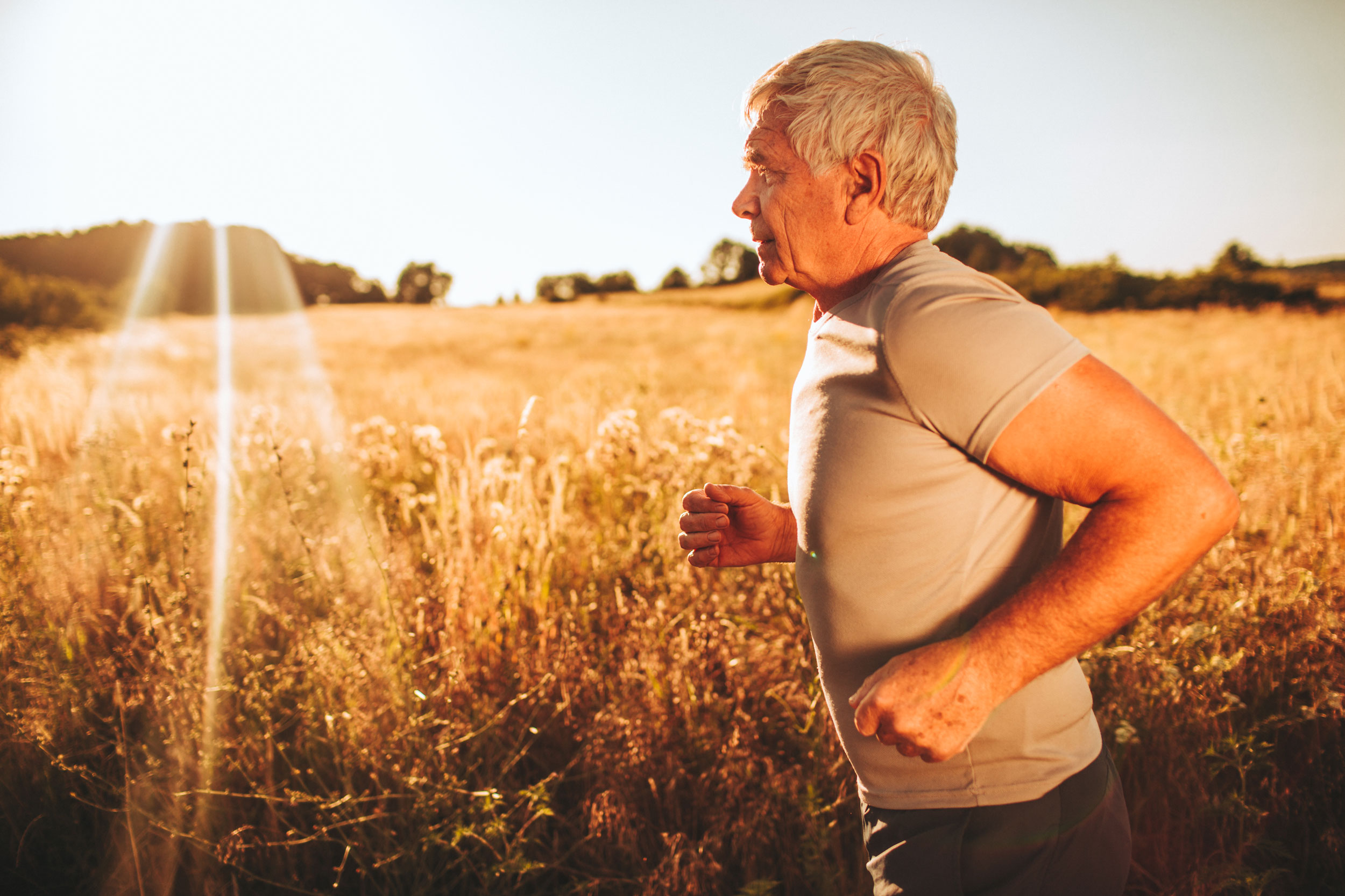 Elvira Lange - Fysisk träning för äldre personer med reumatoid artrit.